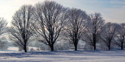 Winterferien - schon wieder Halbzeit